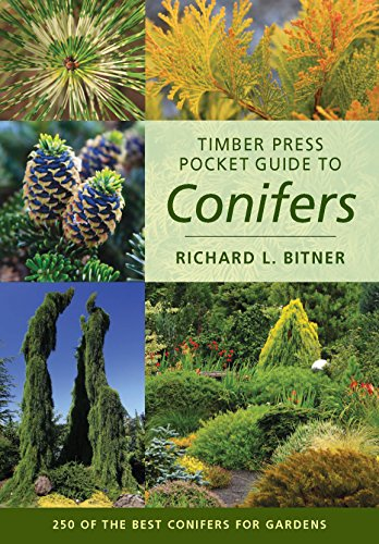 9781604691702: Timber Press Pocket Guide to Conifers (Timber Press Pocket Guides)