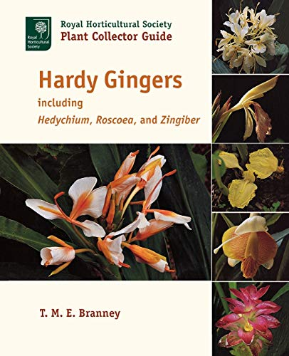 9781604691733: Hardy Gingers: including Hedychium, Roscoea, and Zingiber