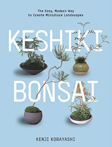 9781604693591: Keshiki Bonsai: The Easy, Modern Way to Create Miniature Landscapes