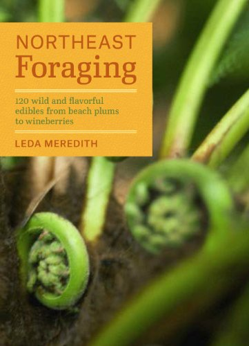 9781604694178: Northeast Foraging: 120 Wild and Flavorful Edibles from Beach Plums to Wineberries (Regional Foraging Series)