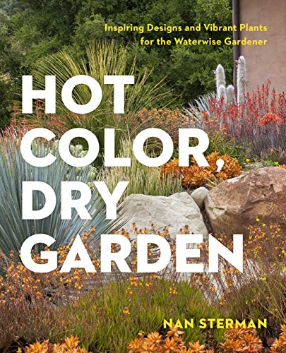 9781604694574: Hot Color, Dry Garden: Inspiring Designs and Vibrant Plants for Year-Round Beauty