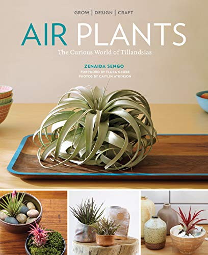 9781604694895: Air Plants: The Curious World of Tillandsias