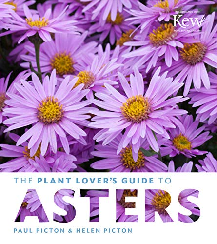 9781604695182: The Plant Lover's Guide to Asters (The Plant Lover's Guides)