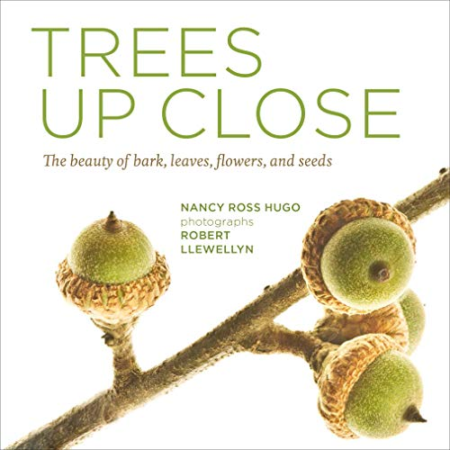 9781604695823: Trees Up Close: The Beauty of Their Bark, Leaves, Flowers, and Seeds