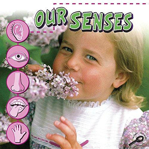 9781604720389: Our Senses (Our Bodies)