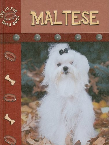 9781604723656: Maltese (Eye to Eye With Dogs)