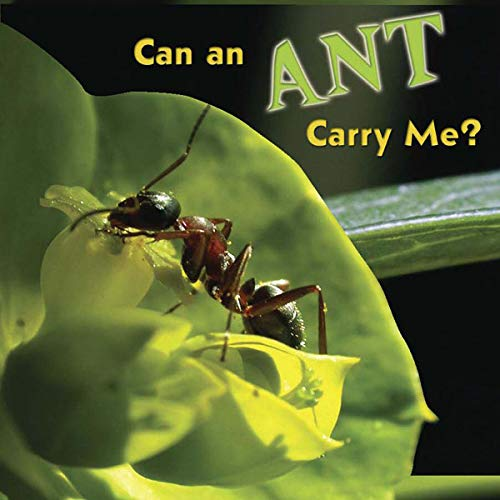 9781604724257: Can an Ant Carry Me? (Bug Board Books)