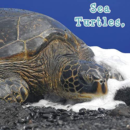 9781604724288: Sea Turtles, What Do You Do? (Rourke Board Books)