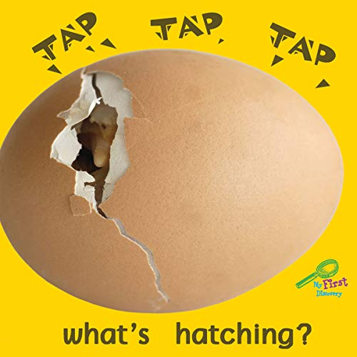 Tap, Tap, Tap . . . What's Hatching? (Rourke Board Books): Meg Greve