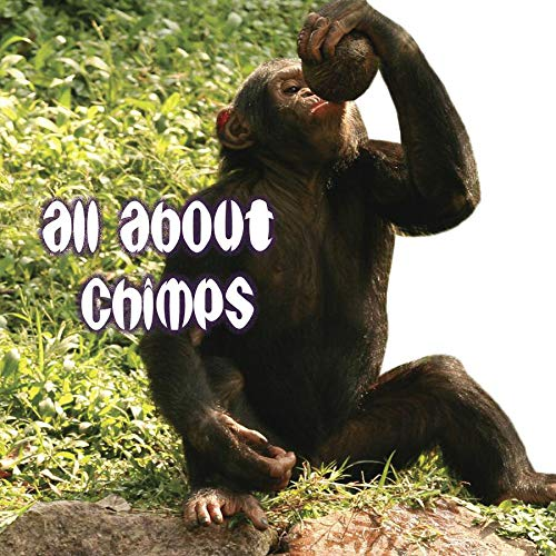 9781604724547: All About Chimps (Rourke Board Books)
