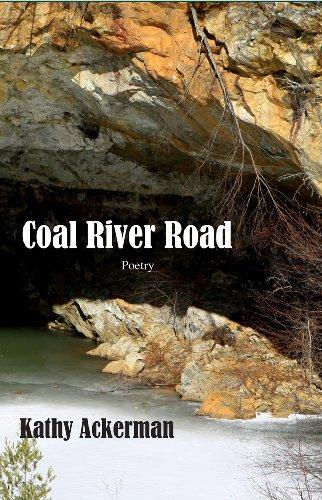 9781604891157: Coal River Road