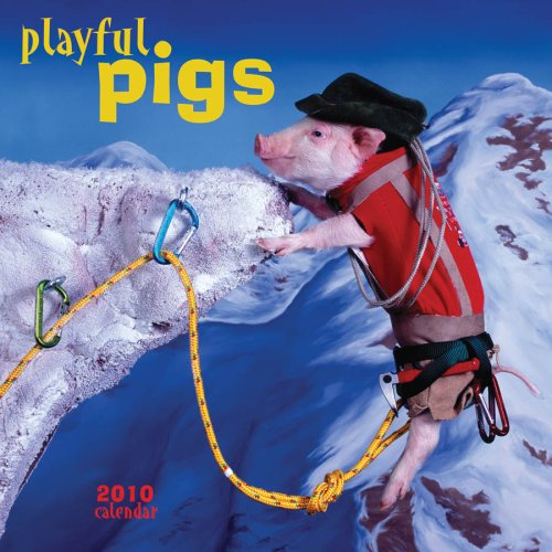 Playful Pigs 2010 Wall Calendar: Time Factory Publishing
