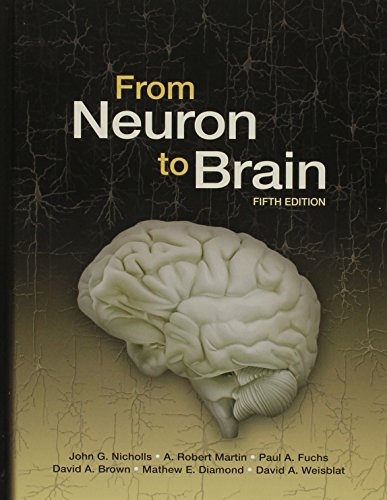 9781605353920: From Neuron to Brain, Fifth Edition with Neurons in Action 2: Tutorials and Simulations using NEURON Download