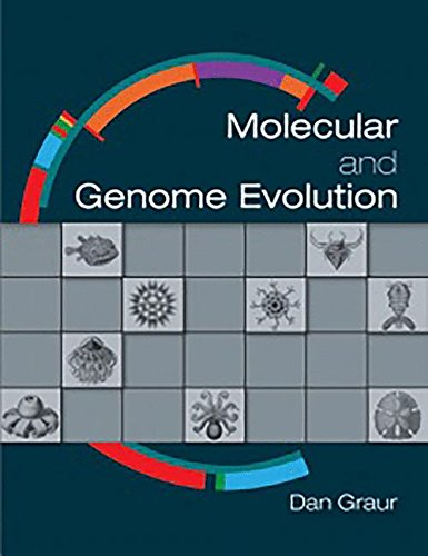 9781605354699: Molecular and Genome Evolution