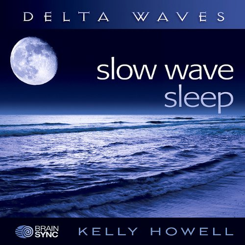 9781605680651: Slow Wave Sleep