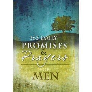 9781605870854: 365 Daily Promises & Prayers for Men