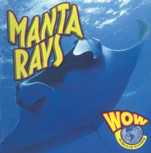 Manta Rays (World of Wonder (Weigl Paperback)): Wearing, Judy