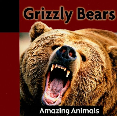9781605966427: Grizzly Bears (Amazing Animals)