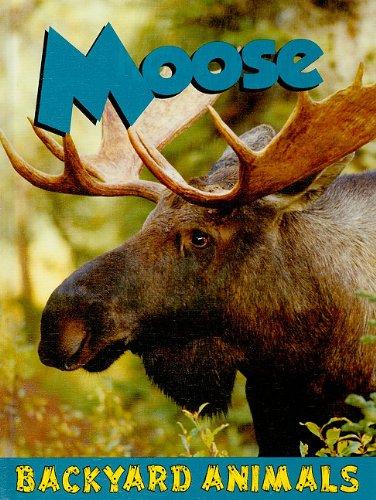 9781605969466: Moose (Backyard Animals)