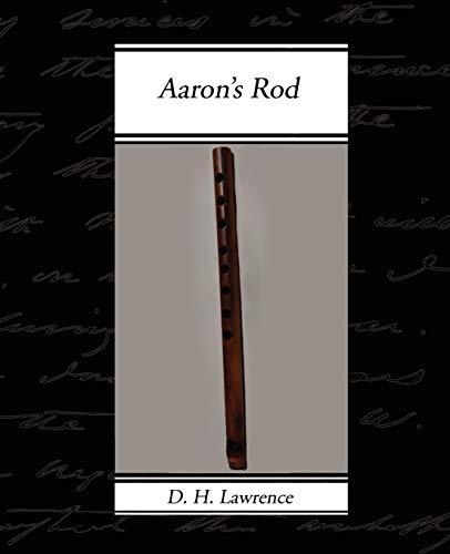 9781605971070: Aaron's Rod