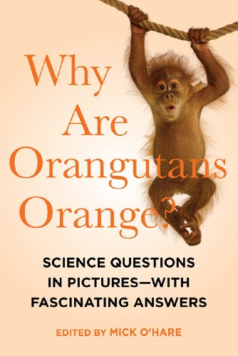 Why Are Orangutans Orange?: Science Questions in: O'Hare, Mick