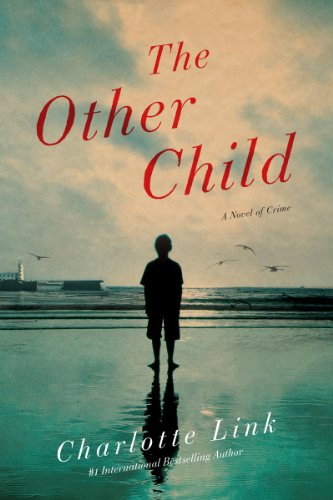 9781605985589: The Other Child: A Novel