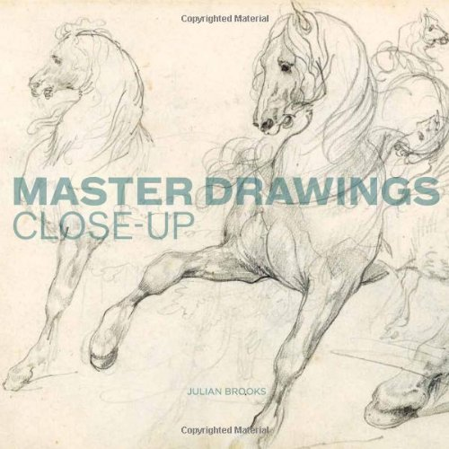 9781606060193: Master Drawings Close-Up