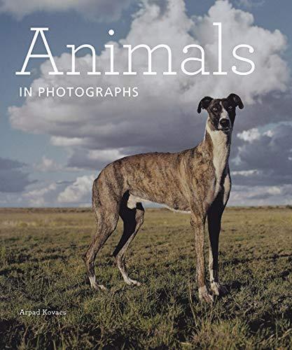 9781606064412: Animals in Photographs