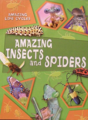 9781606260043: Amazing Insects and Spiders (Amazing Life Cycles)