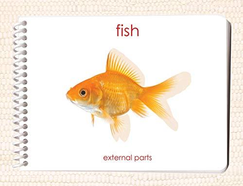 9781606290064: Fish: External Parts Book (External Anatomy of the Fish)