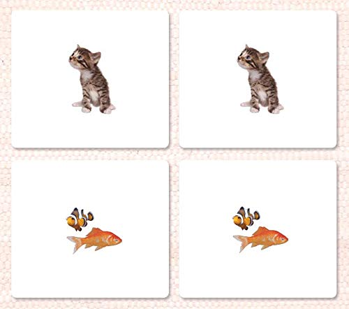 9781606290750: Pets Matching Cards
