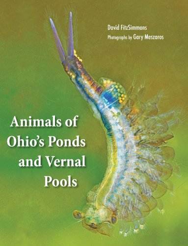 Animals of Ohio's Ponds and Vernal Pools: David Fitzsimmons