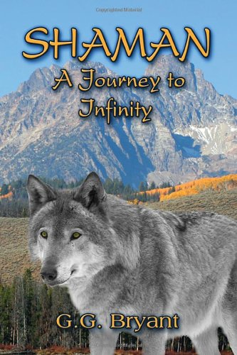 9781606722848: Shaman: A Journey to Infinity