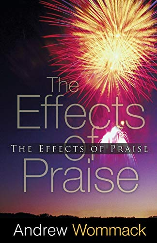 9781606835227: The Effects of Praise