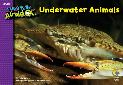 9781606891216: Underwater Animals, I Used To Be Afraid Of Series
