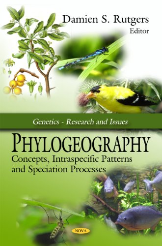 9781606929544: Phylogeography: Concepts, Intraspecific Patterns and Speciation Processes (Genetics - Research and Issues)