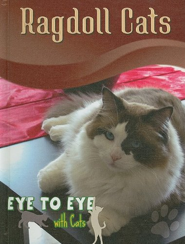9781606943380: Ragdoll Cats (Eye to Eye With Cats)