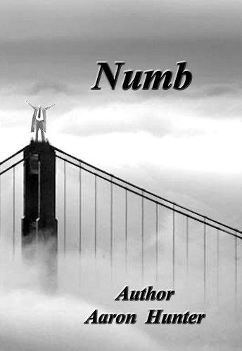 9781607027027: Numb