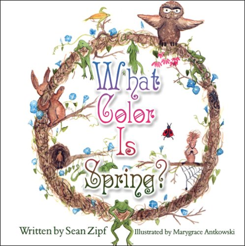 9781607030058: What Color Is Spring?