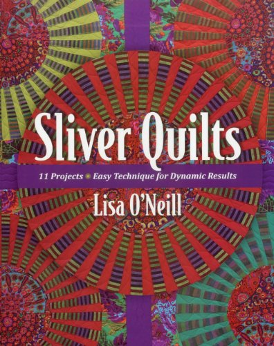 9781607054290: Sliver Quilts: 11 Projects Easy Technique for Dynamic Results