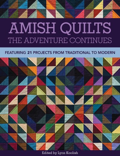 9781607057918: Amish Quilts The Adventure Continues: Featuring 21 Projects from Traditional to Modern