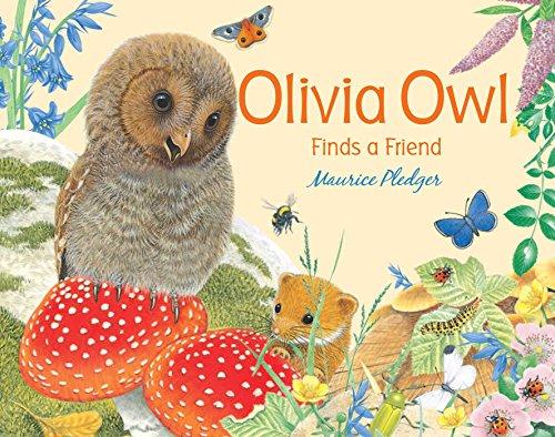 9781607108849: Olivia Owl Finds a Friend