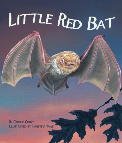 9781607180807: Little Red Bat