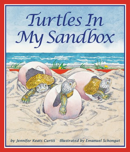 9781607181194: Turtles In My Sandbox
