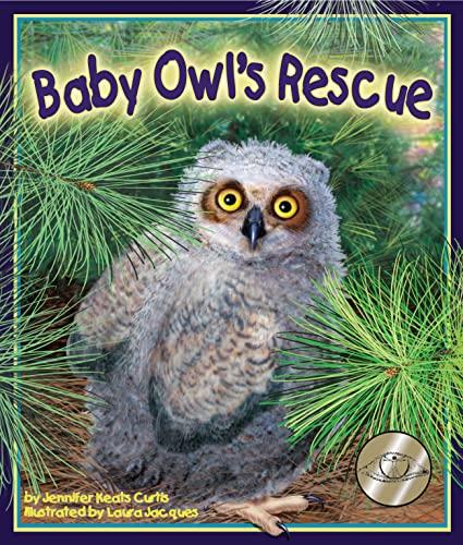 9781607186106: Baby Owl's Rescue