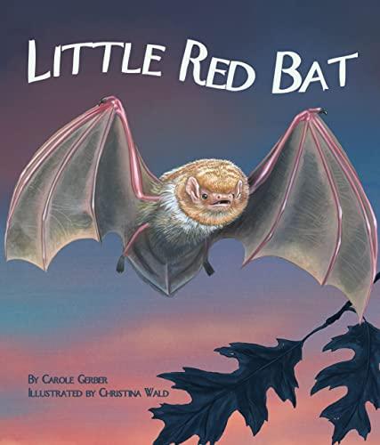 9781607188681: Little Red Bat