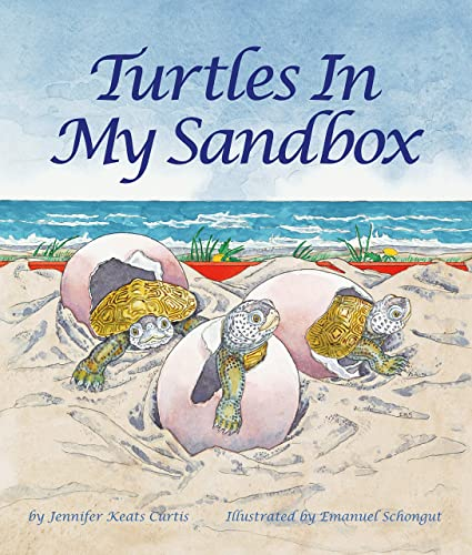 9781607188728: Turtles In My Sandbox