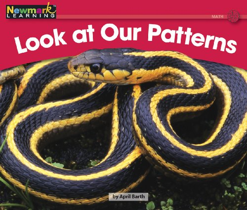 Look at Our Patterns (Rising Readers): April Barth