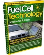 9781607256403: Fuel Cell Technology and Market Potential
