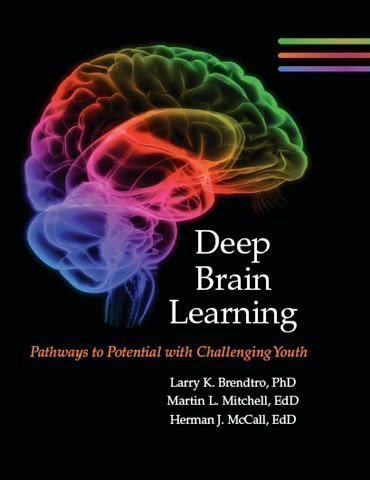 9781607257899: Deep Brain Learning Pathways to Potential with Challenging Youth